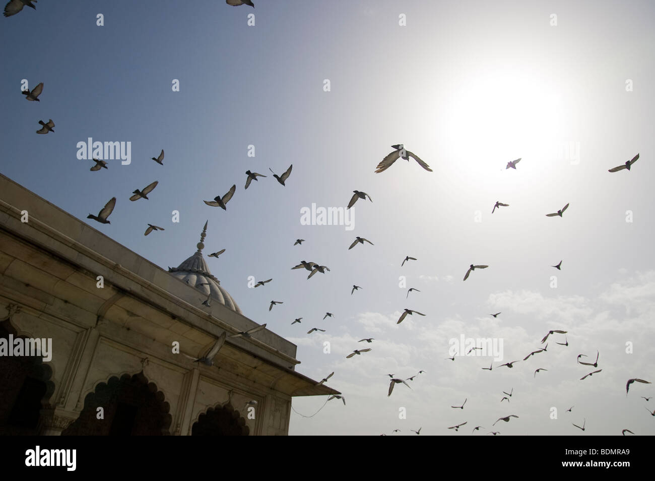 A group of birds flies away over the Red Fort in New Delhi, India. - Stock Image