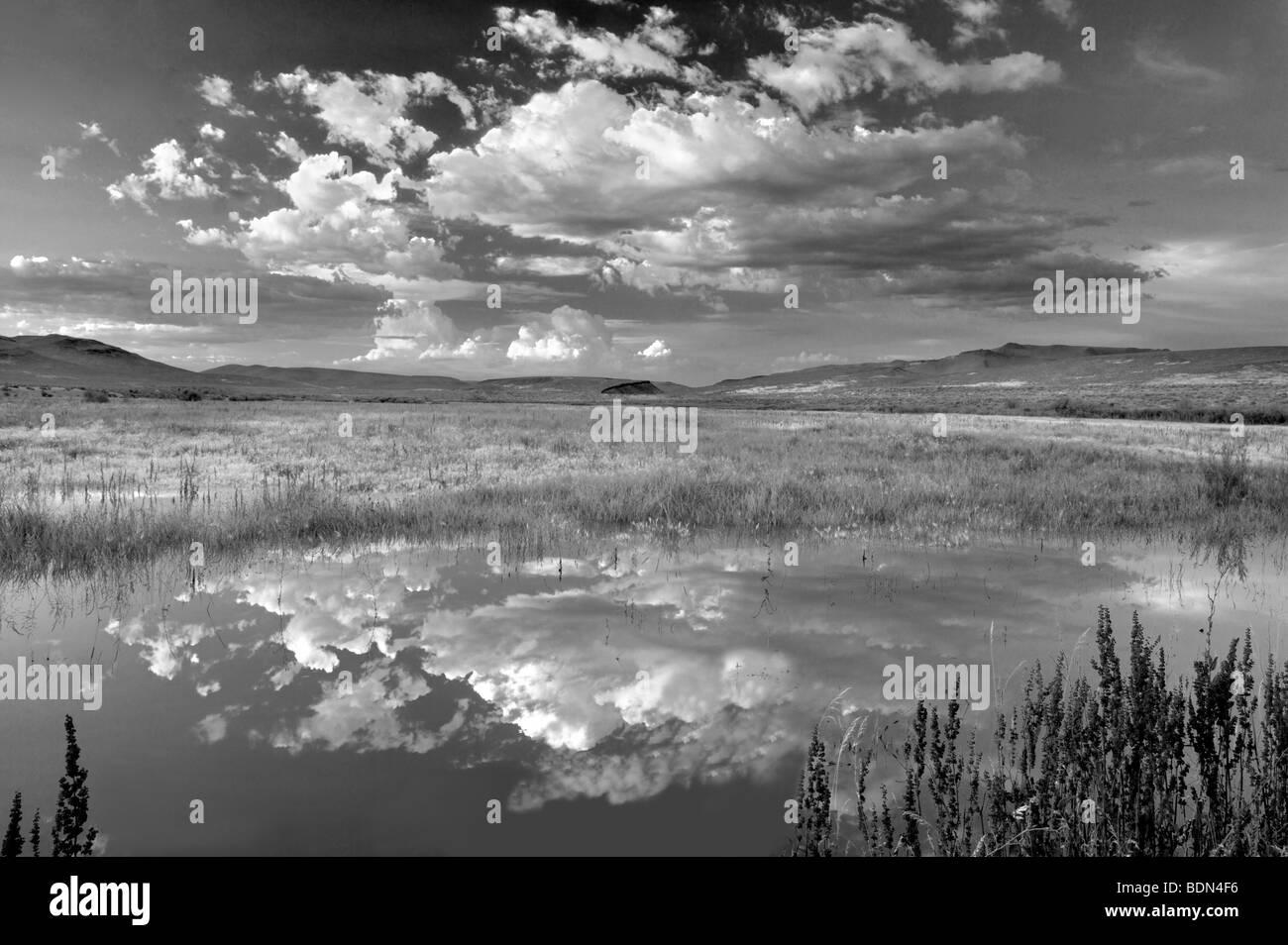 Sunset clouds over pond. Black Rock Desert National Conservation Area. Nevada - Stock Image