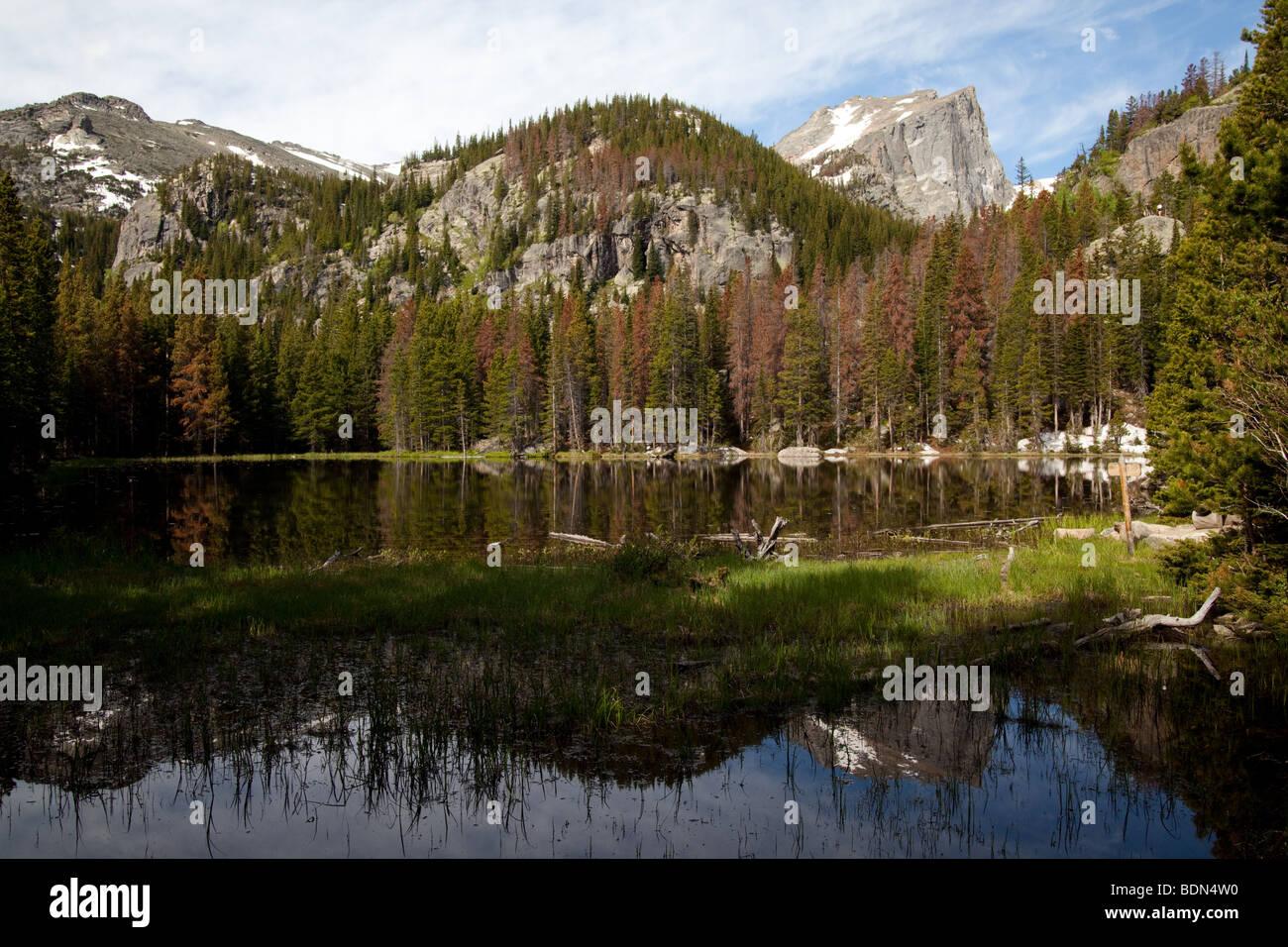 Nymph Lake, Estes Park Colorado - Stock Image
