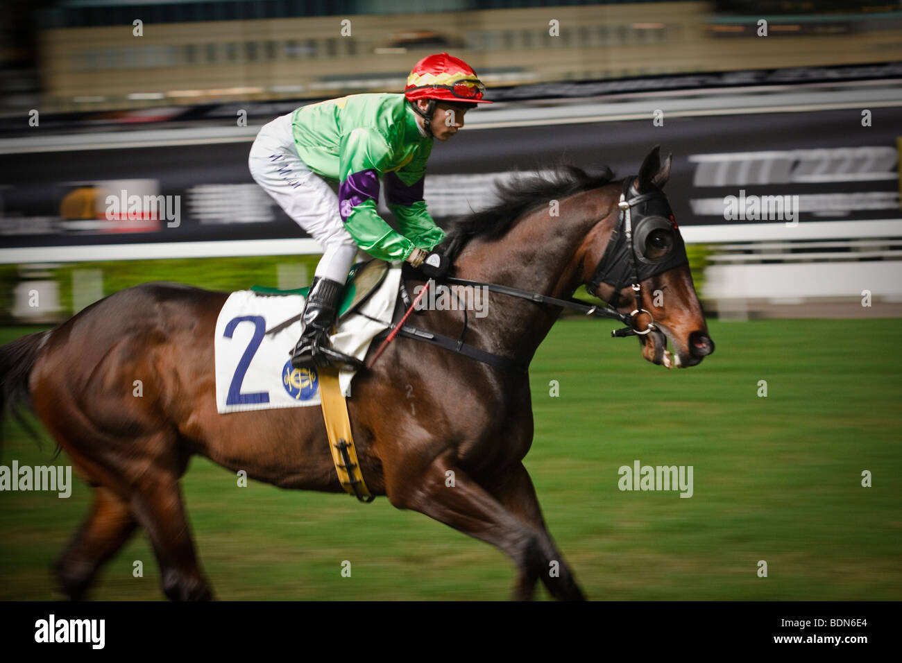 A jockey and his mount ride out to the start at a night horse racing event at the Happy Valley race course in Hong - Stock Image