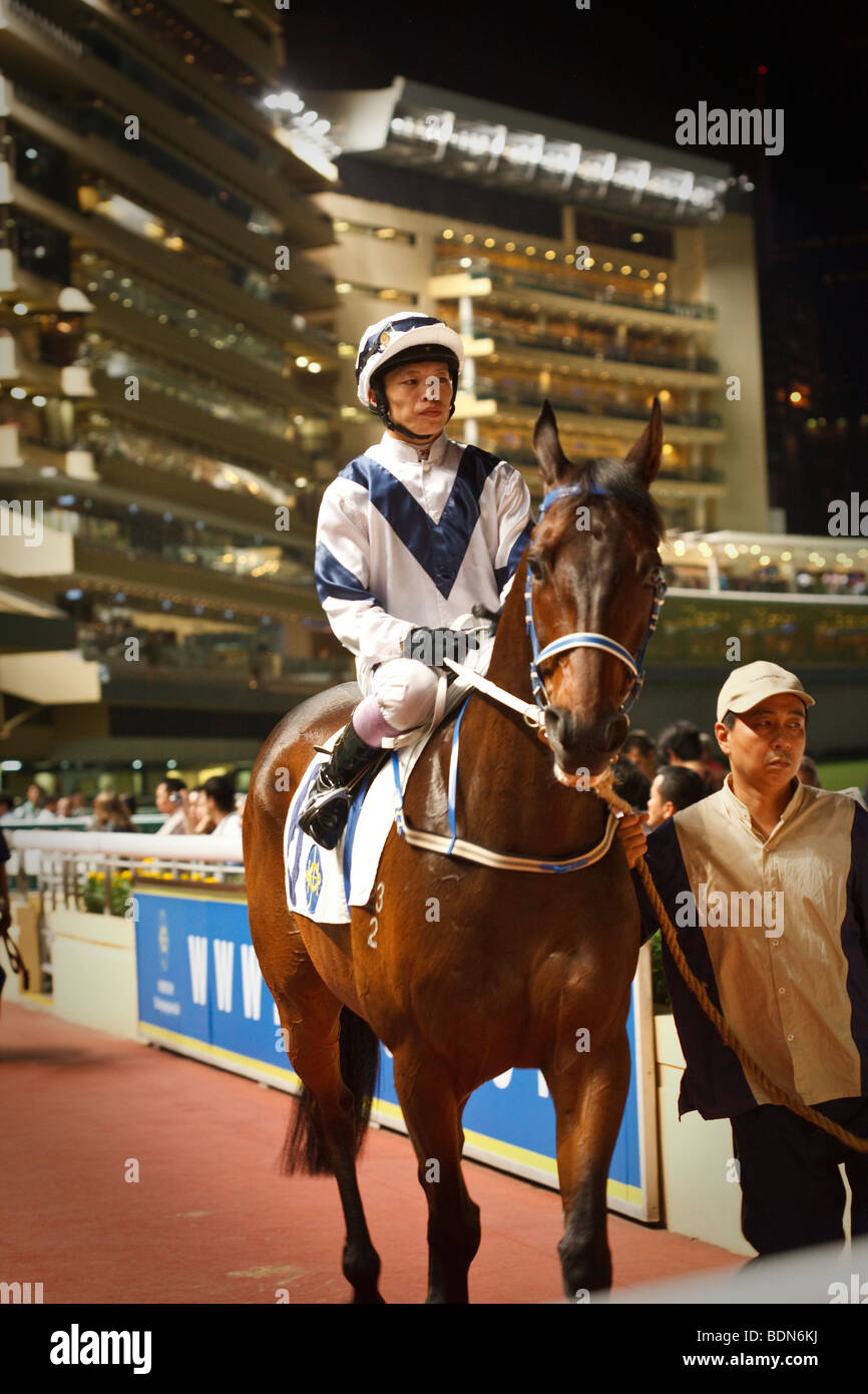 A jockey on his mount with handler in the parade ring at a night horse racing event at Happy Valley race course - Stock Image