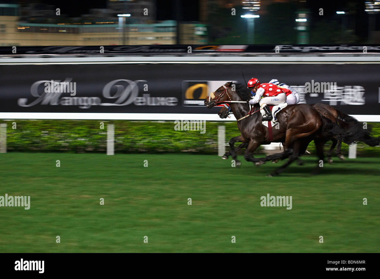 Horses galloping to the finish - night horse racing at Happy Valley race course in Hong Kong. - Stock Image