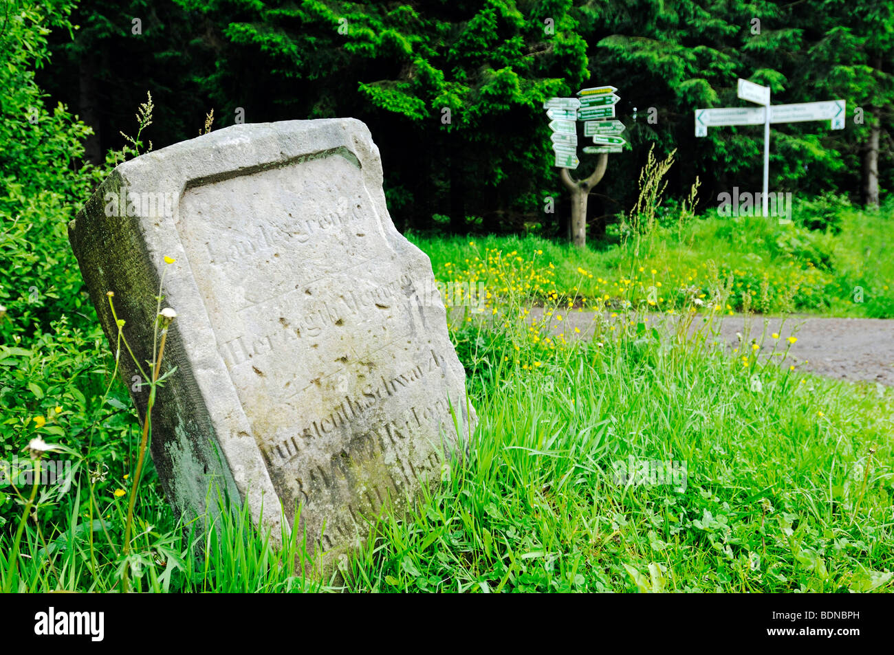 Historical border stone on the border of three principalities, Rennsteig, Thuringian Forest, Thuringia, Germany, - Stock Image