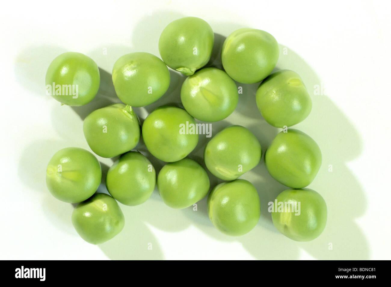 Garden Pea, Pea (Pisum sativum), peas, studio picture. - Stock Image