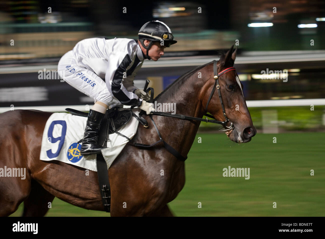 A jockey on his mount ride out to the start at a night horse racing event at the Happy Valley race course in Hong - Stock Image