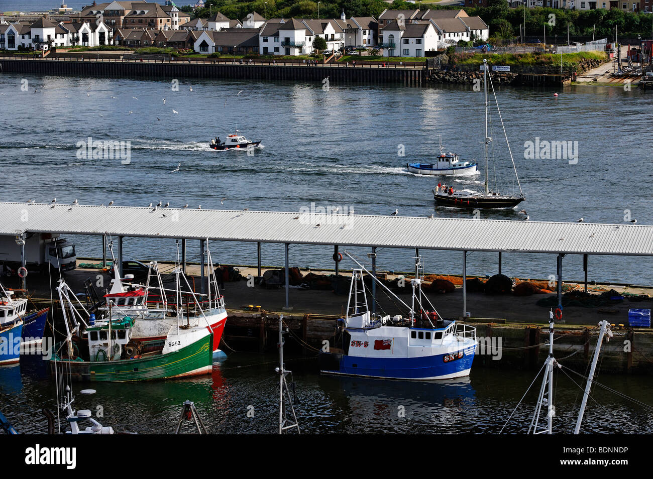 View of River Tyne and the harbour at Fish Quay, South Shields - Stock Image