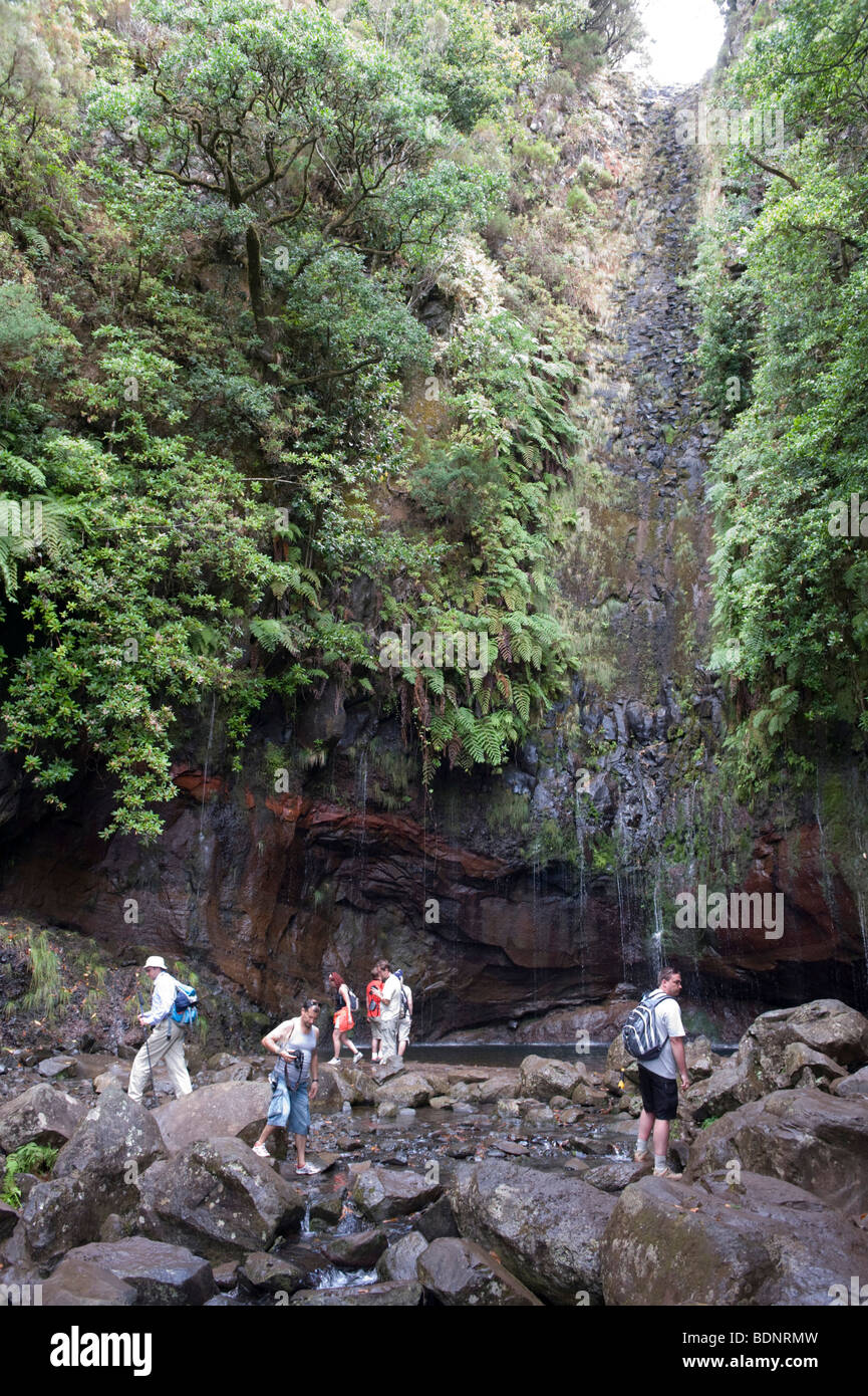 Hikers at the 25 sources, Fontes, in the Parque Natural de Madeira, Portugal, Europe - Stock Image