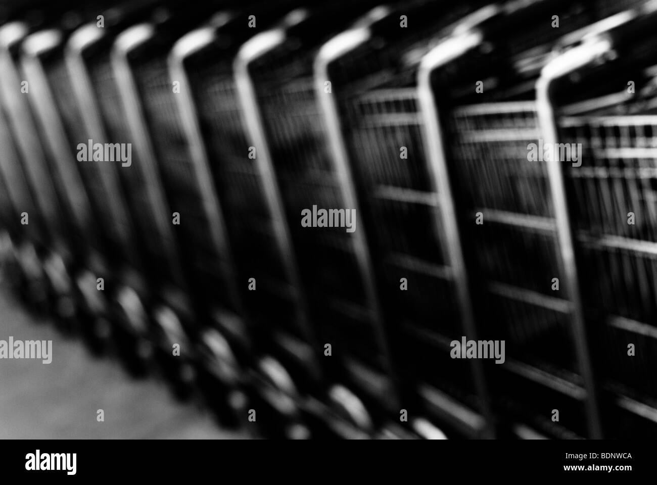A row of shopping trolleys - Stock Image