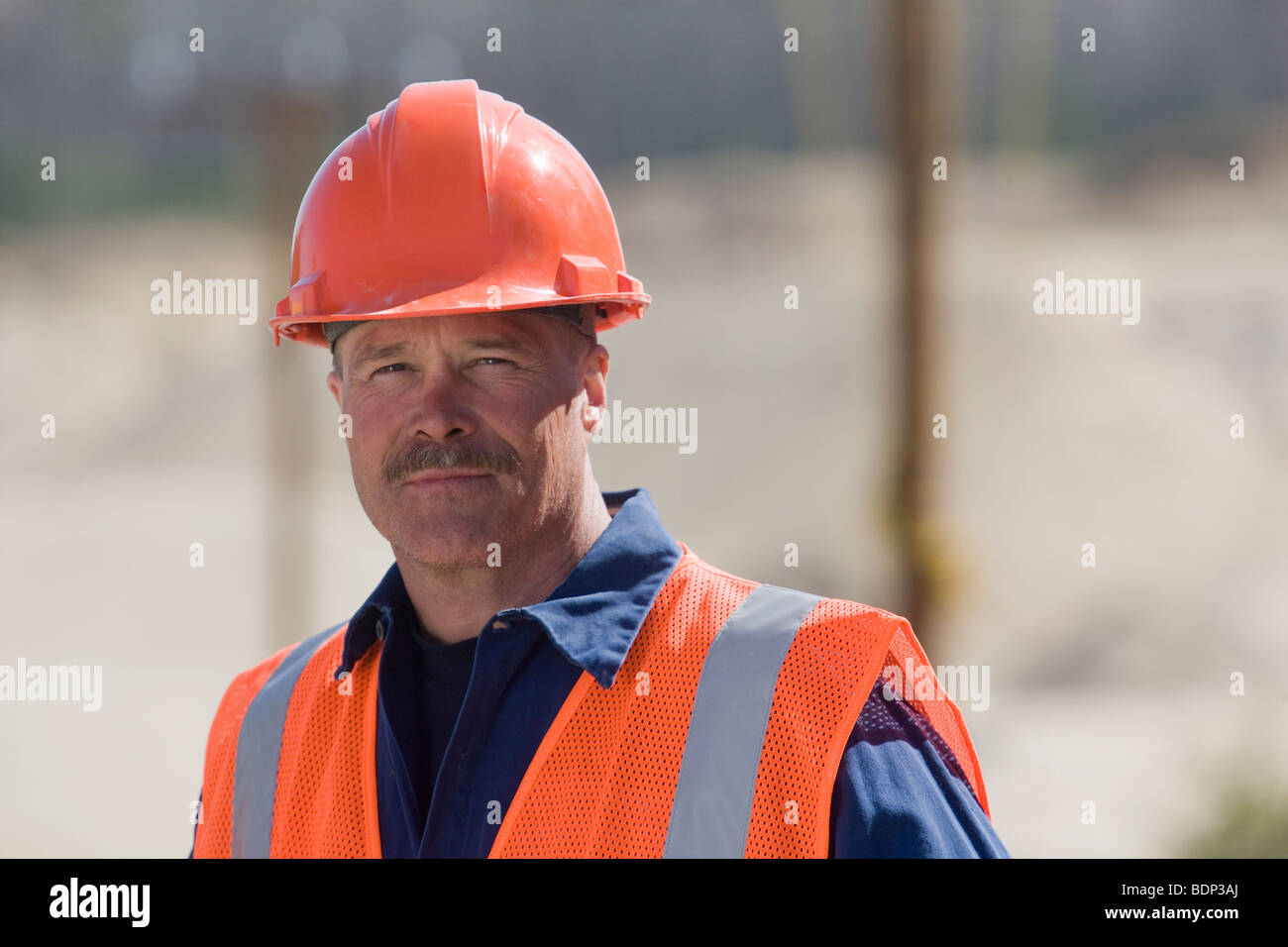 Engineer at a plant - Stock Image