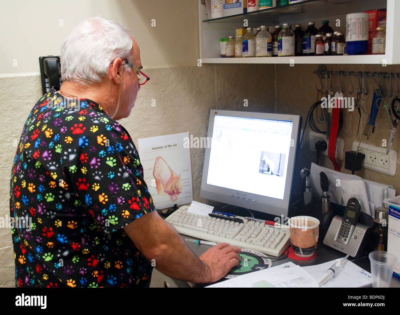 Vet's Clinic, for pets and small animals. Veterinary surgeon in his office. Model release available - Stock Image