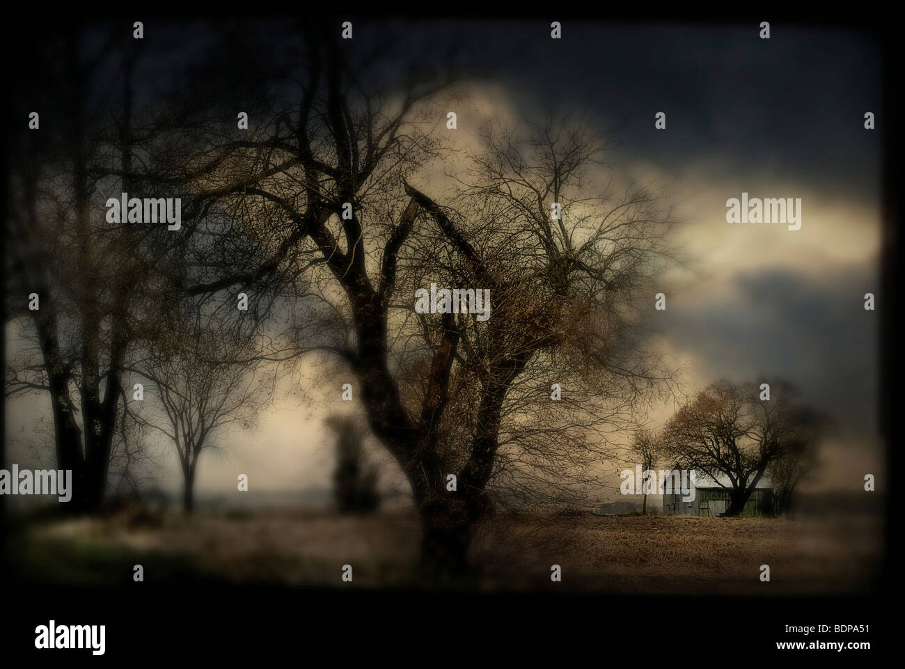 A blurred country scene with trees and farm building - Stock Image