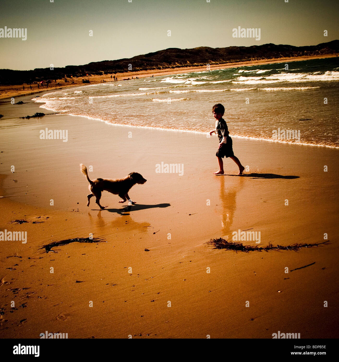 A boy and a dog on a beach having fun - Stock Image