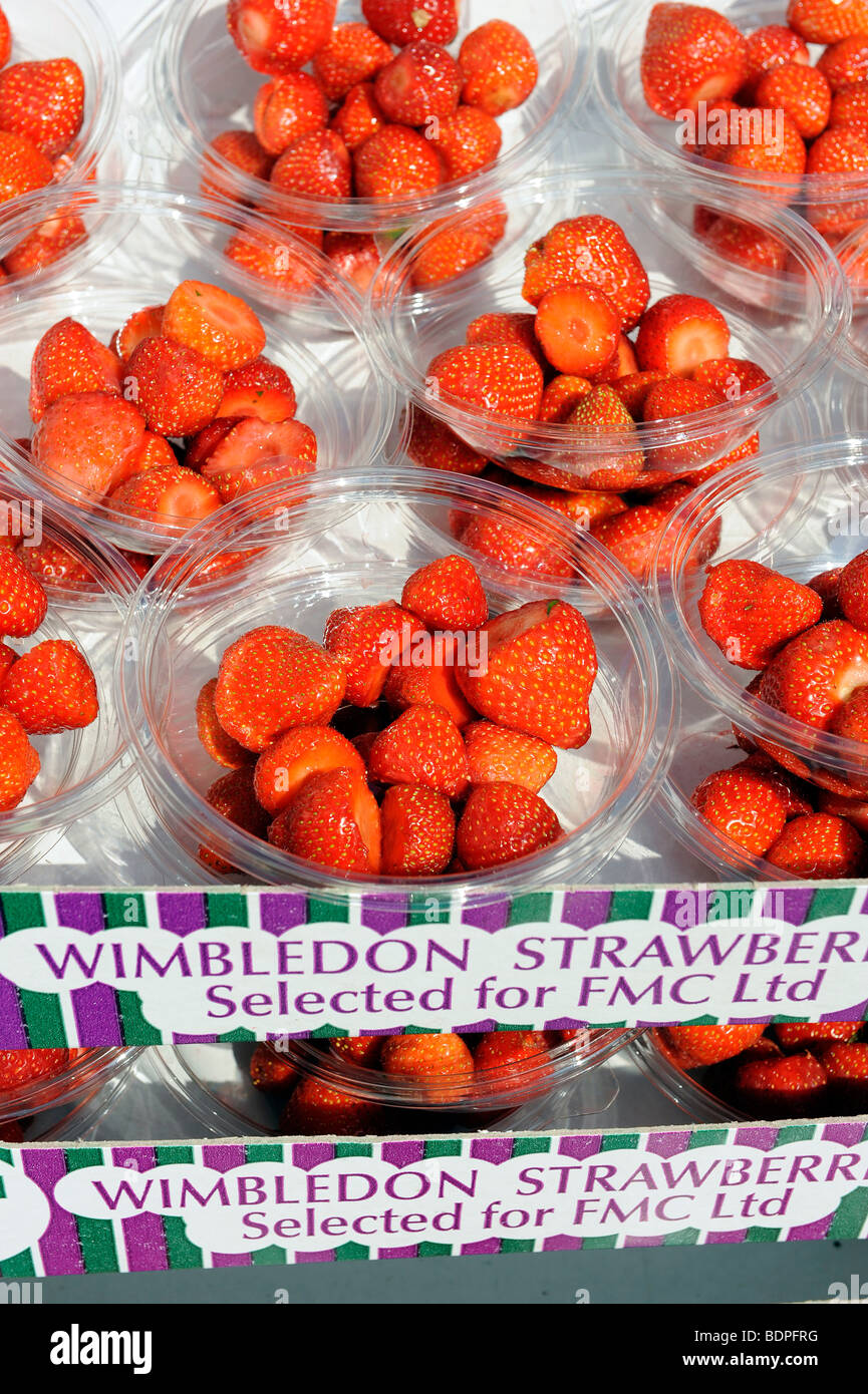 Strawberries in boxes wait to go out on display in the Lawn Buffet during the 2009 Wimbledon Tennis Championships - Stock Image
