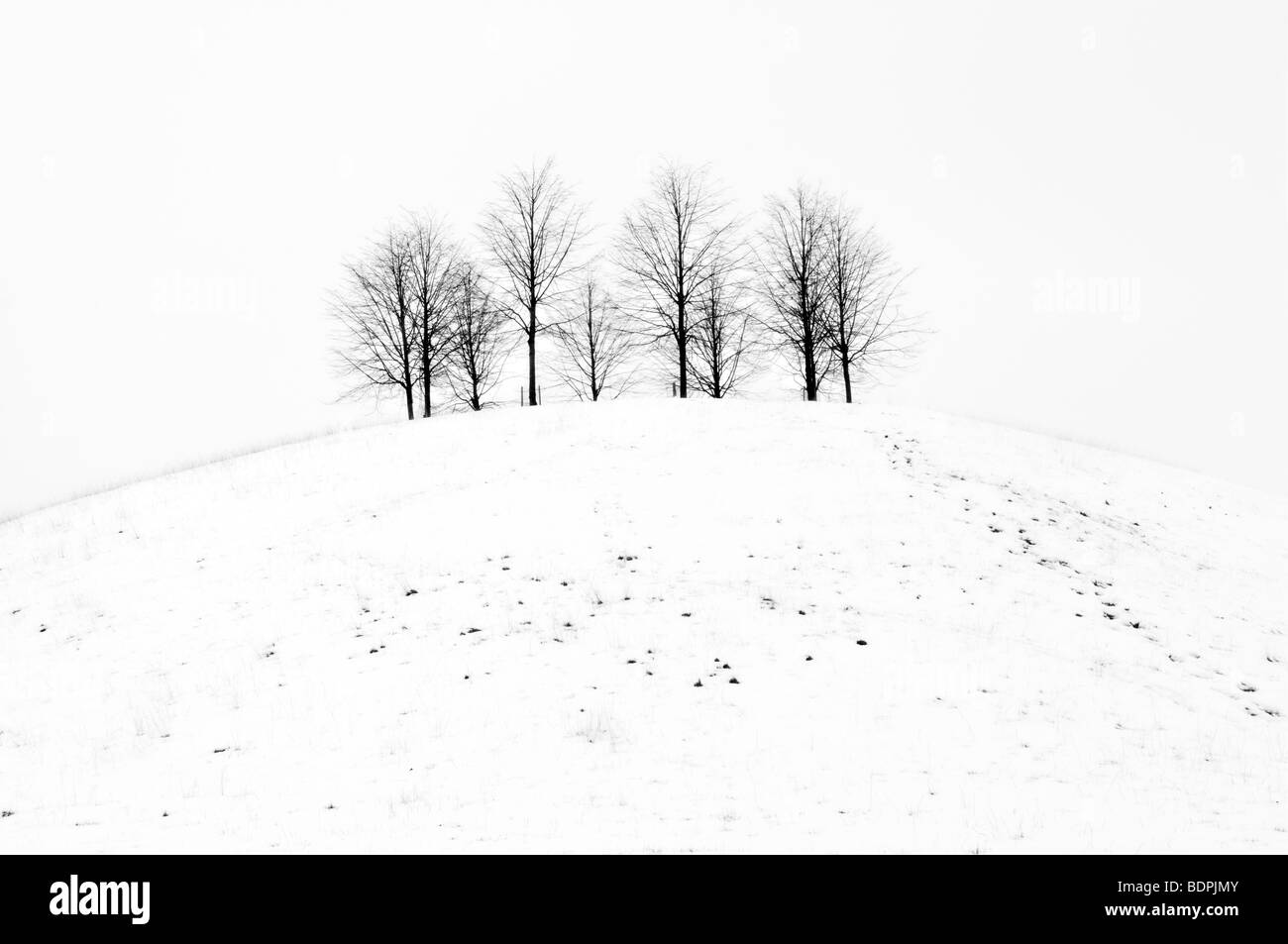 Black and white rural scene of snow covered small hill with trees on taken from Cotswold Way near Old Sodbury , - Stock Image