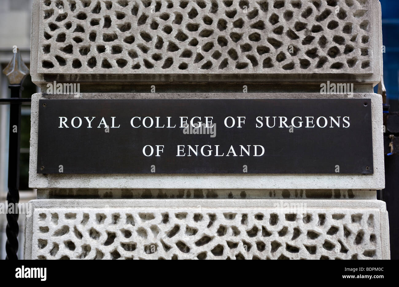 Royal College of Surgeons Lincolns Inn Fields - Stock Image