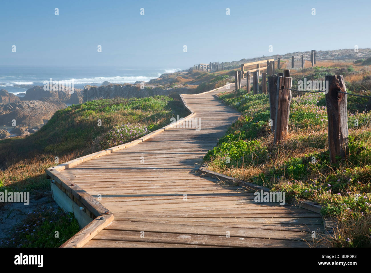 Wooden boardwalk and ocean on 17 Mile Drive. Pebble Beach, California - Stock Image