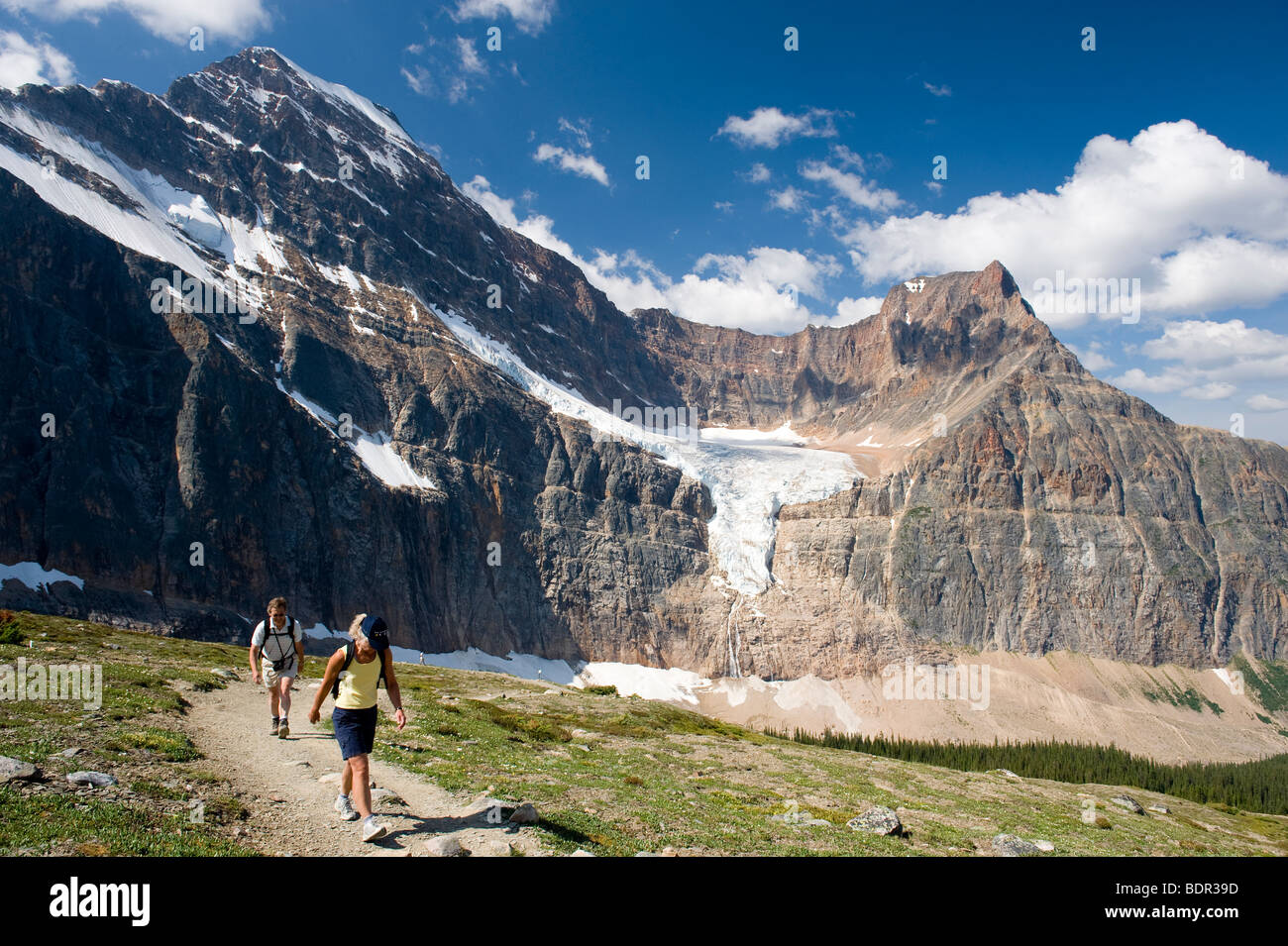 Hikers on the Cavell Meadows Trail with Mount Edith Cavell and the Angel Glacier, Jasper National Park, Alberta, - Stock Image