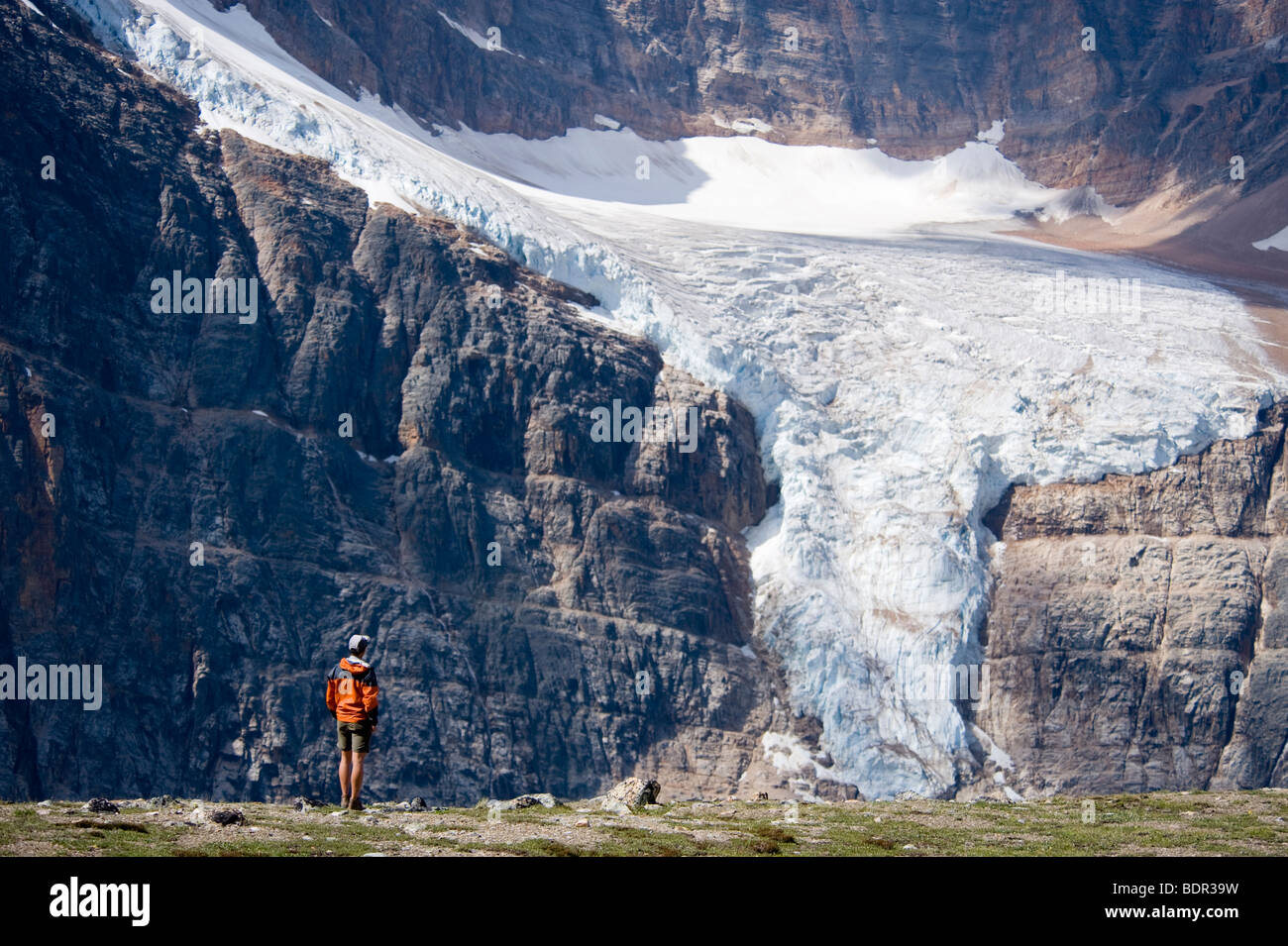 Hiker on the Cavell Meadows Trail backdropped by Mount Edith Cavell and the Angel Glacier, Jasper National Park, - Stock Image