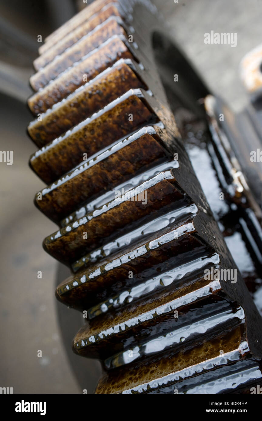 Close up of an oil covered industrial cog - Stock Image