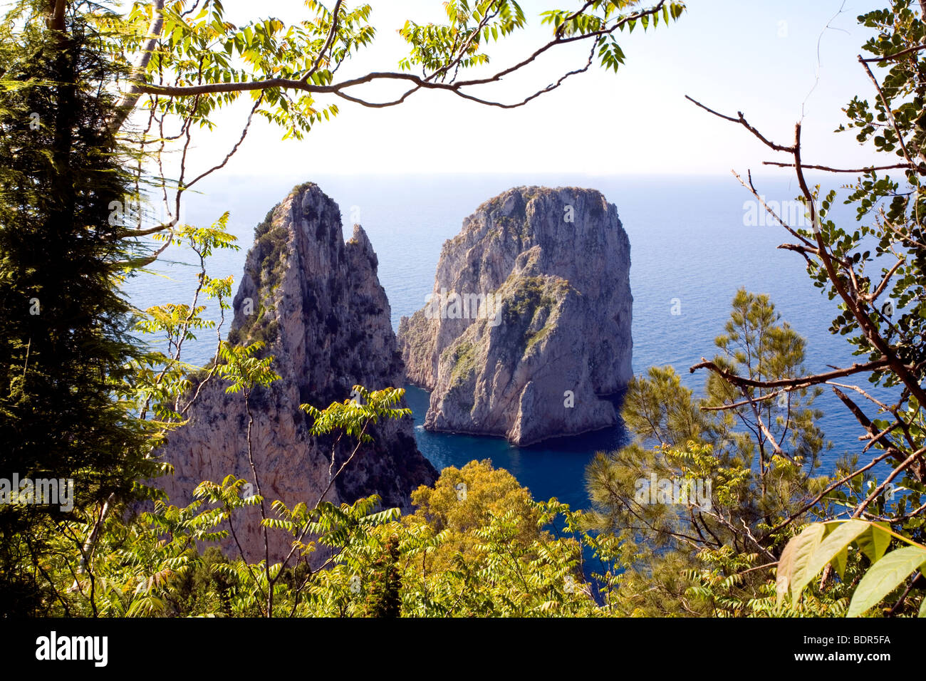 The famous Faraglioni twin Rocks surrounded by water and taken from a cliff above, A landmark on the Isle of Capri, - Stock Image