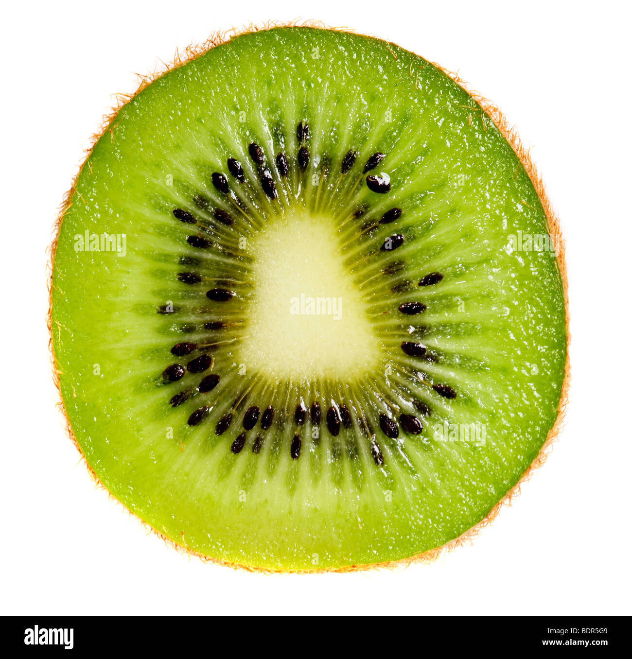 Close up of kiwi slice isolated over white background Stock Photo
