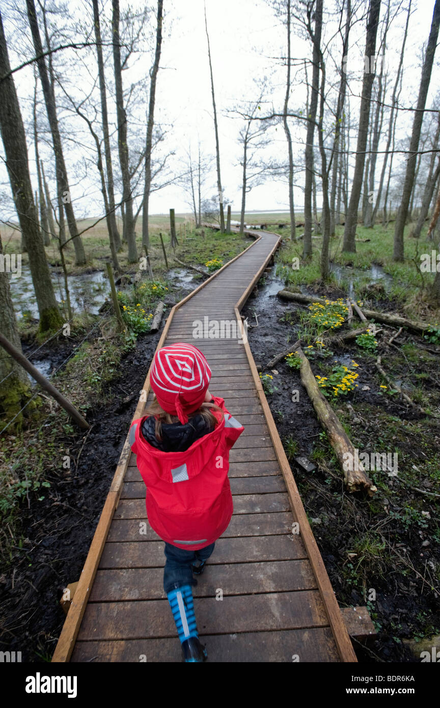 A little girl walking in a forest Sweden. - Stock Image