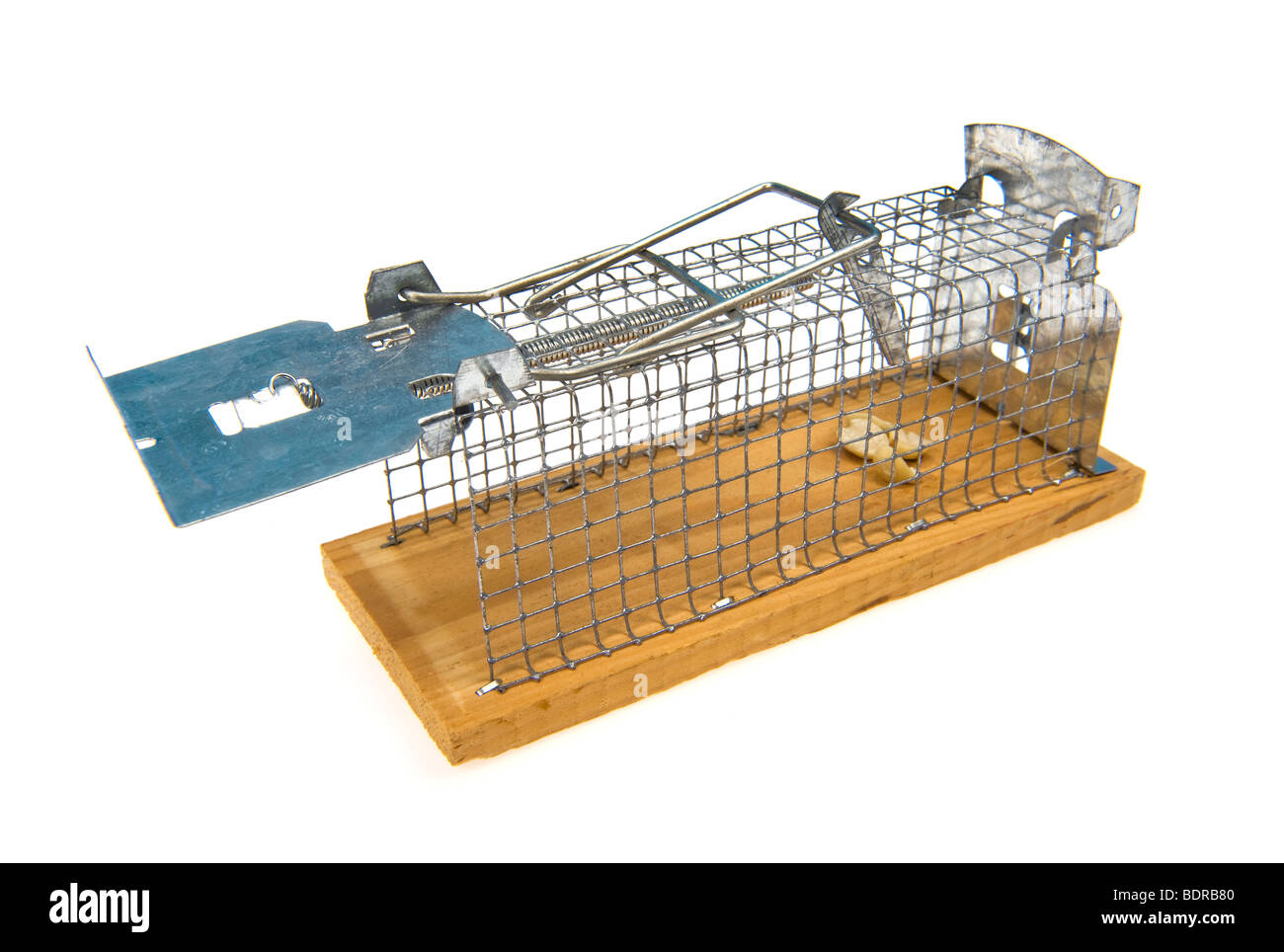 trap mousetrap livetrap live mouse snare trapping entrap fall into a trap metal wood wooden catch alive catching - Stock Image