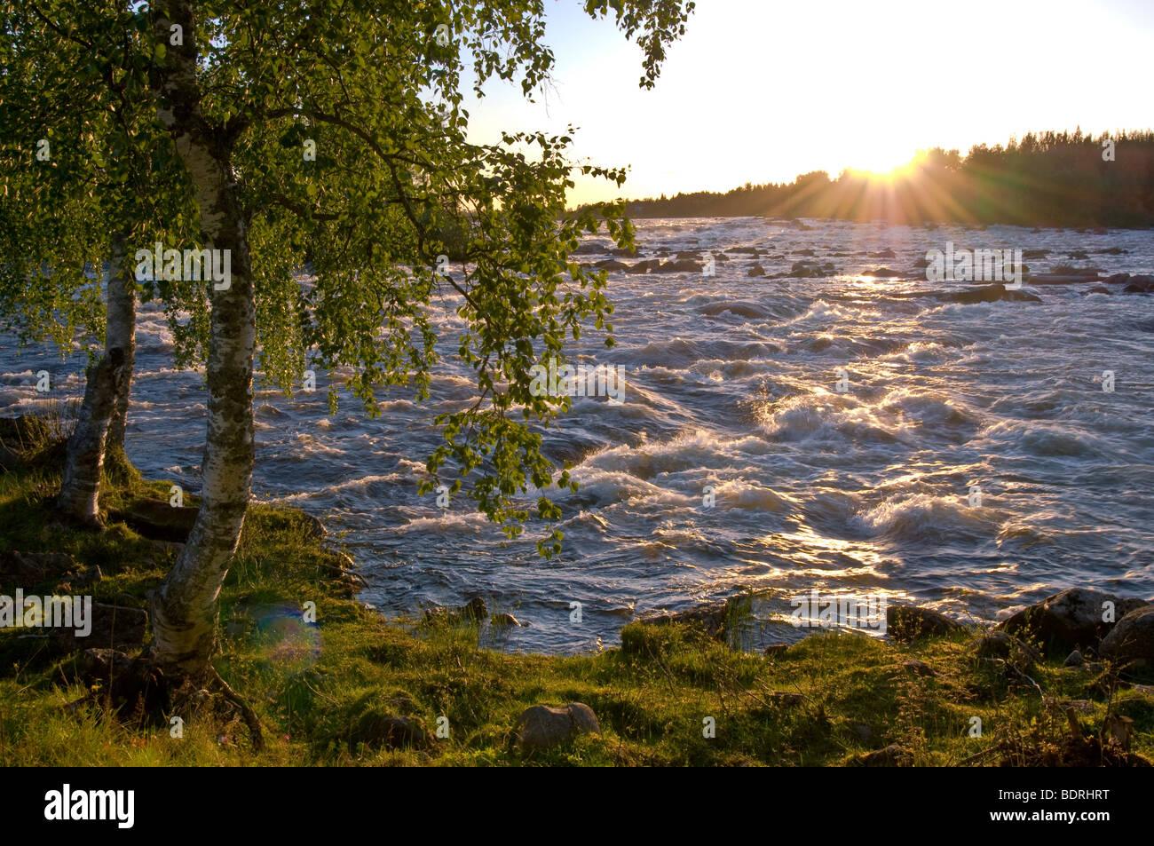 abendstimmung ueber den stromschnellen Kengisforsen, pajala, lappland, schweden, evening mood at rapids, lapland, Stock Photo