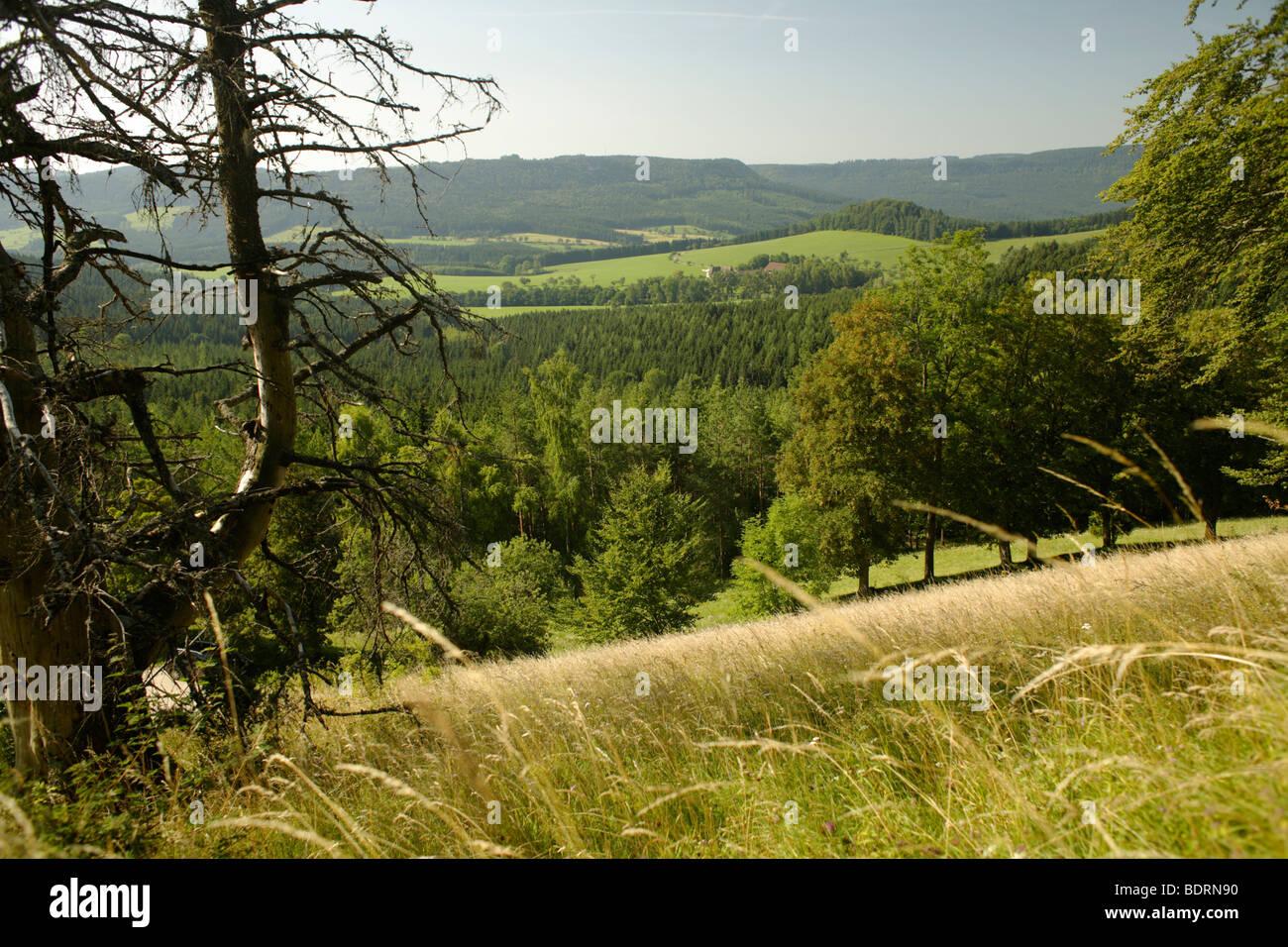 View from Lochenstein in the Danube Valley,schwaebische Alb, Donaubergland, Baden-Wuerttemberg, Germany, Europe - Stock Image