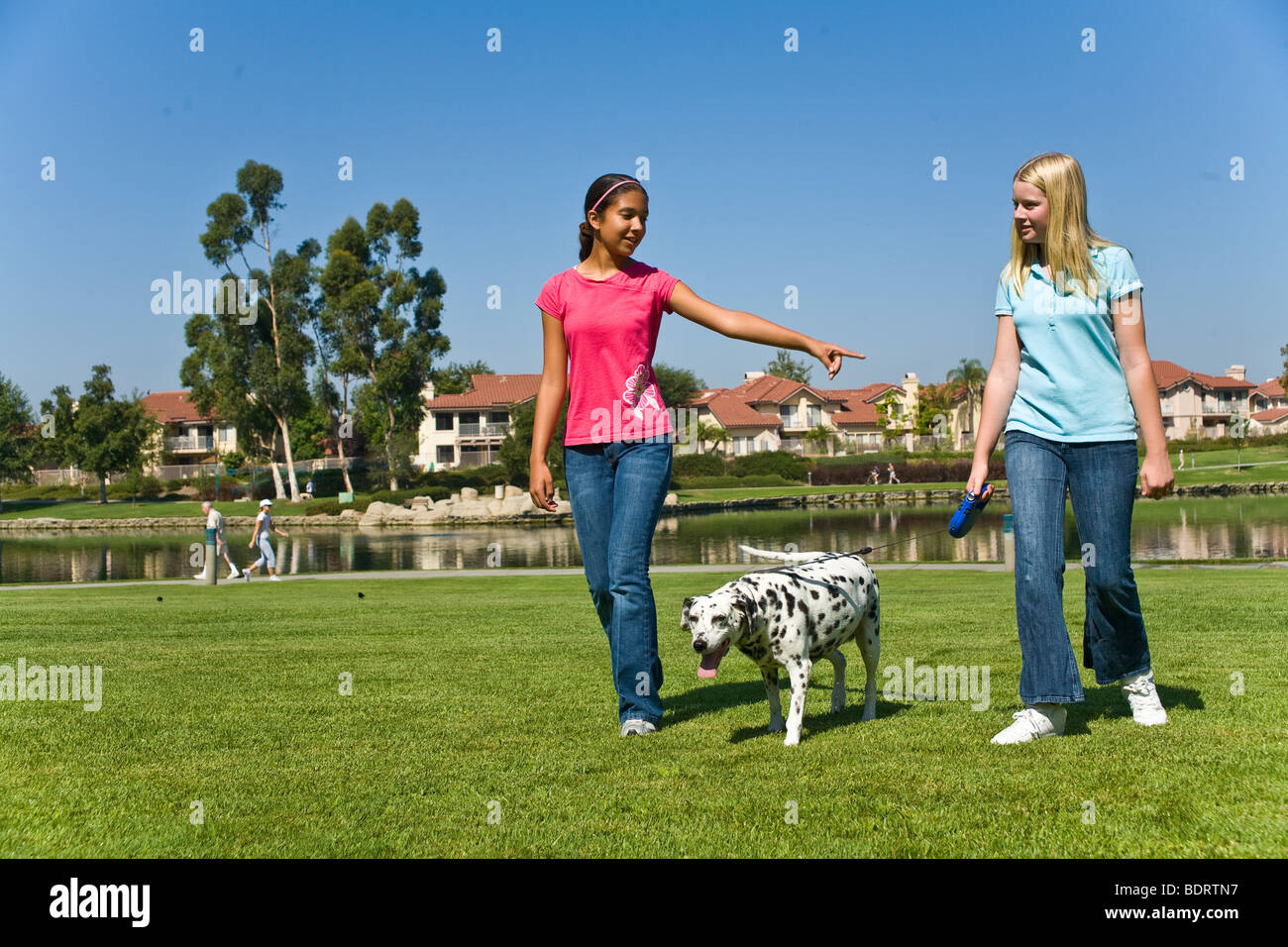 Tween tweens hanging out racially mixed racial mix Multi ethnic Hispanic and Caucasian teenage girls walking dalmatian - Stock Image