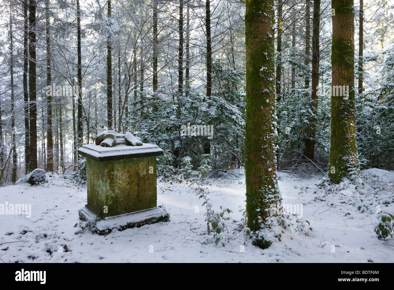 Memorial in Morchard Bishop Wood after a heavy snowfall, Devon, England. Winter (February) 2009 - Stock Image