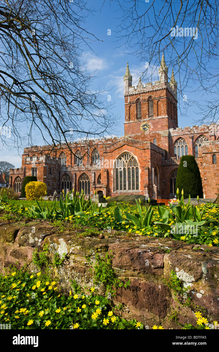 Church of the Holy Cross, the parish church of Crediton in early Spring, Devon, England. April 2009 - Stock Image