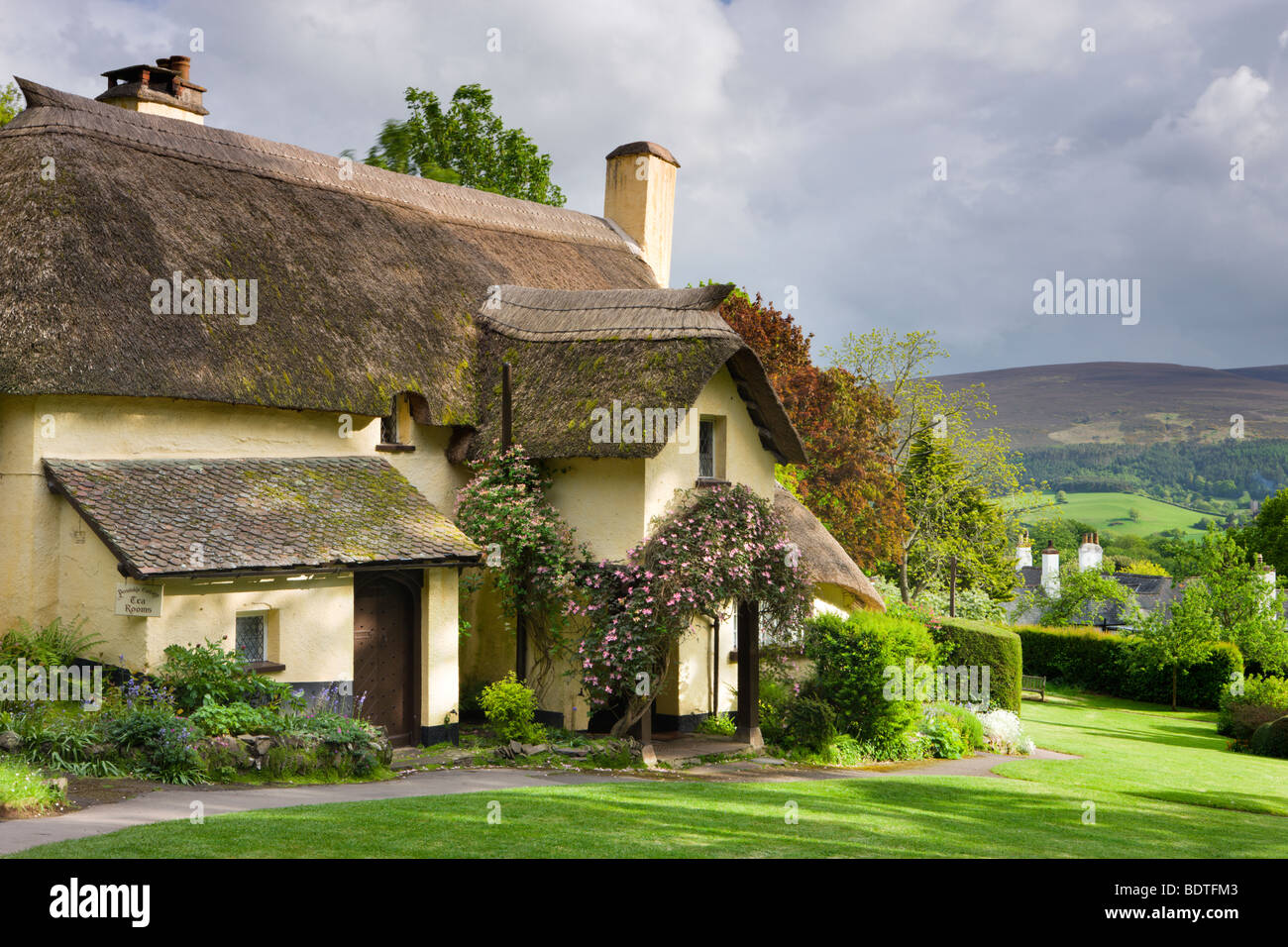 Pretty thatched cottage in the picturesque village of Selworthy, Exmoor National Park, Somerset, England. Spring - Stock Image