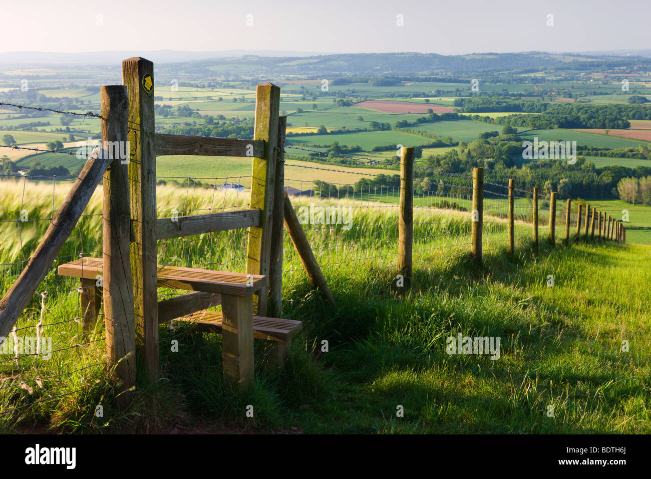 Footpath and stile leading over fence through fields, Raddon Hill, Mid Devon, England. Summer (July) 2009 - Stock Image