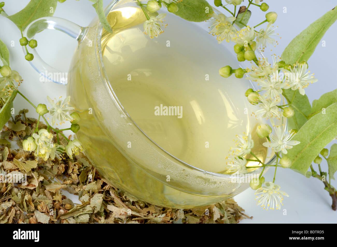 Lime, a cup of tea and dried blooms / (Tilia tomentosa) Stock Photo