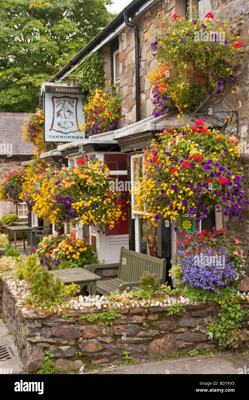 'hanging baskets' outside a 'public house' - Stock Image