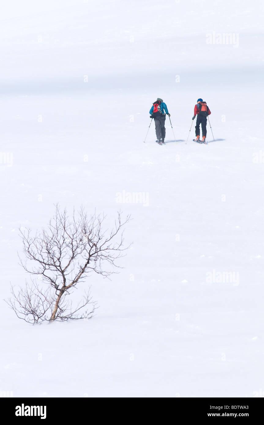 skitourengeher im schneetreiben, storulvan, jaemtlands fjaell, jaemtland, schweden, ski touring in driving snow, - Stock Image
