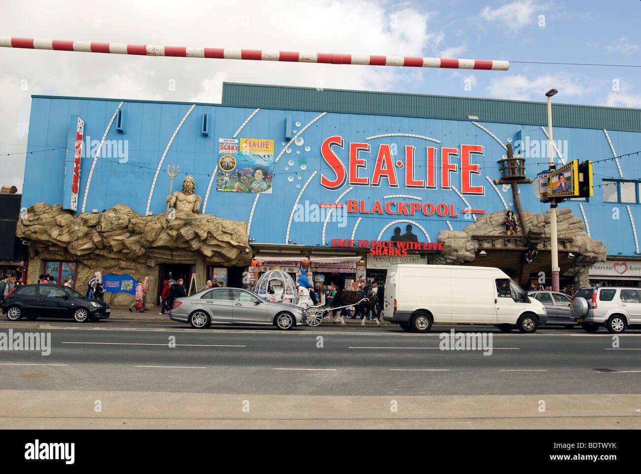 Sealife aquarium on the Blackpool Golden Mile seafront. - Stock Image