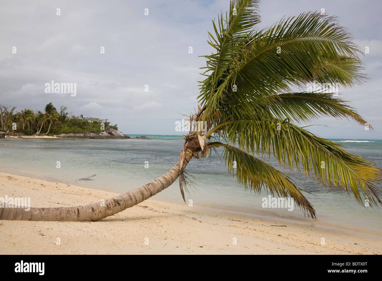 Strand von Nosy Nato, Madagaskar, Afrika, beach, Nosy Nato, Madagascar, Africa - Stock Image