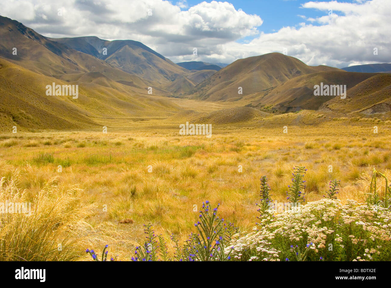 Lindis Pass, rolling grassy hills around Lindis Pass, Lindis Valley, Otago, South Island, New Zealand - Stock Image