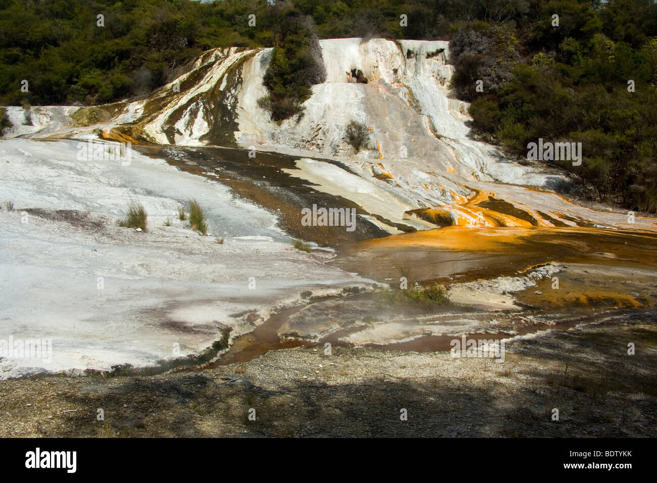 Terrace, hot pool and colourful silica terrace formed by hot water, Orakei Korako, Waikato, North Island, New Zealand - Stock Image