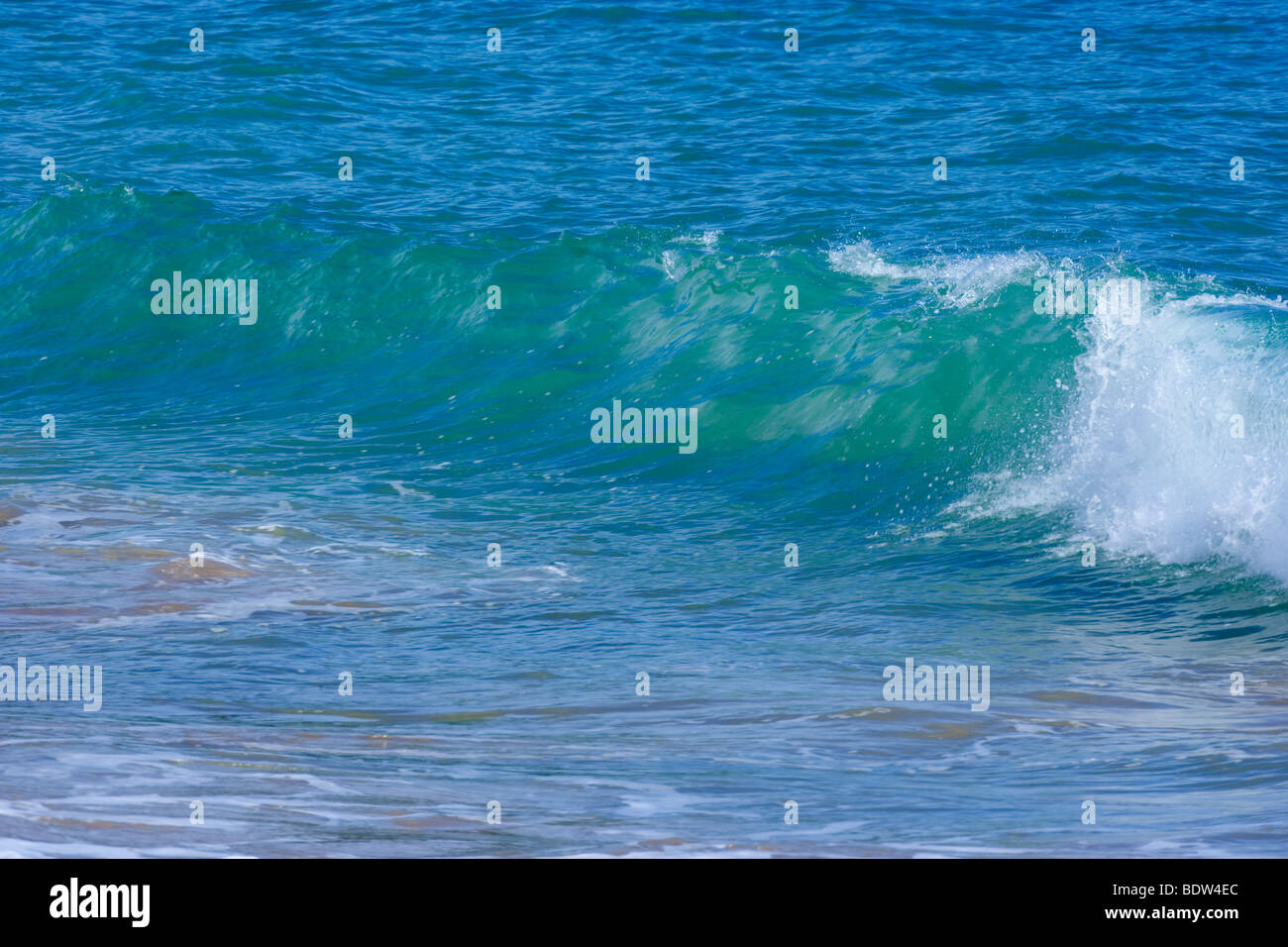 a wave breakes in the vincinity of the beach, Bay of Islands, Northland, North Island, New Zealand - Stock Image