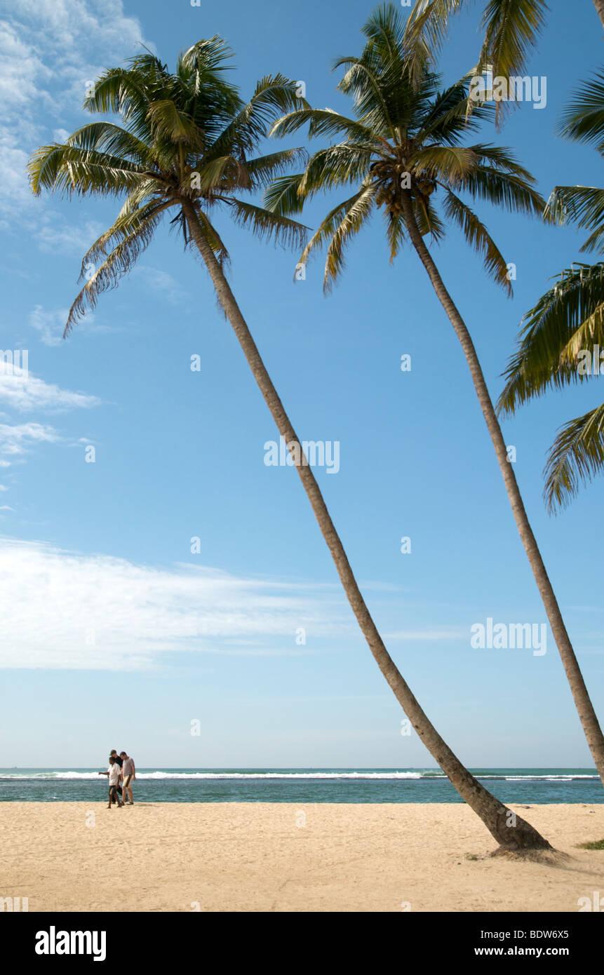 Polhena beach in the Southern town of Matara Sri Lanka Stock Photo