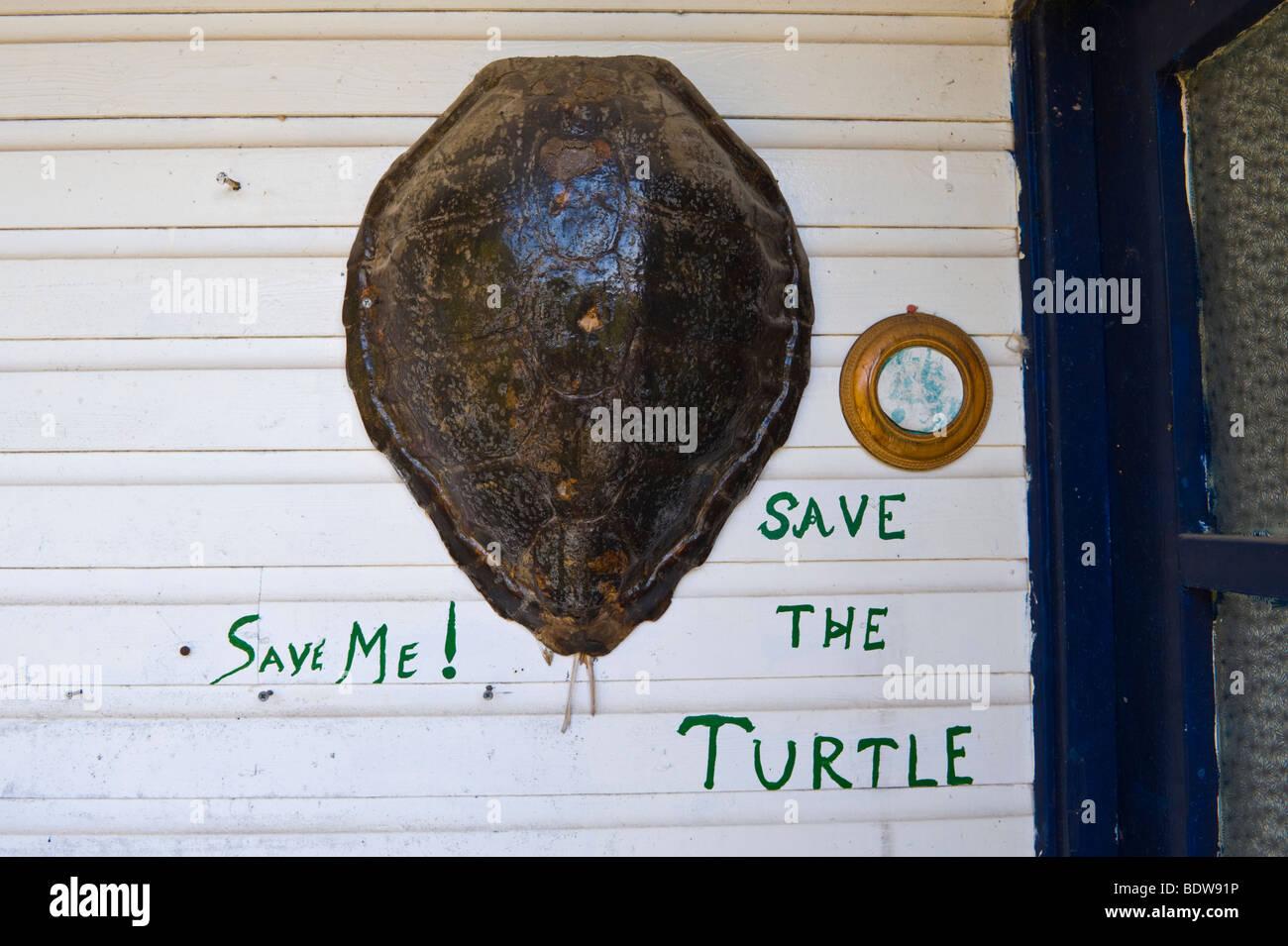 SAVE THE TURTLE Loggerhead turtle shell outside house in Skala on the Greek Mediterranean island of Kefalonia Greece GR Stock Photo