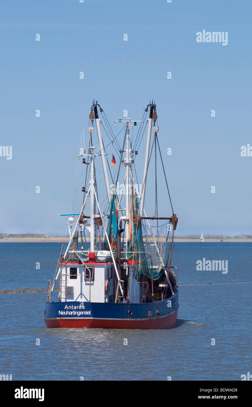 Shrimp boat leaving to catch crabs with visible fishing gear, Neuharlingersiel, Nationalpark Wattenmeer, Wadden - Stock Image