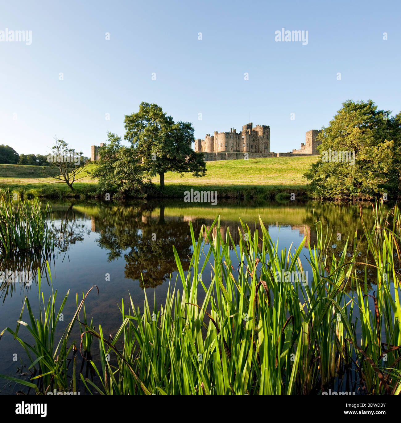 Alnwick castle from the banks of the River Aln on a sunny summer's morning. - Stock Image