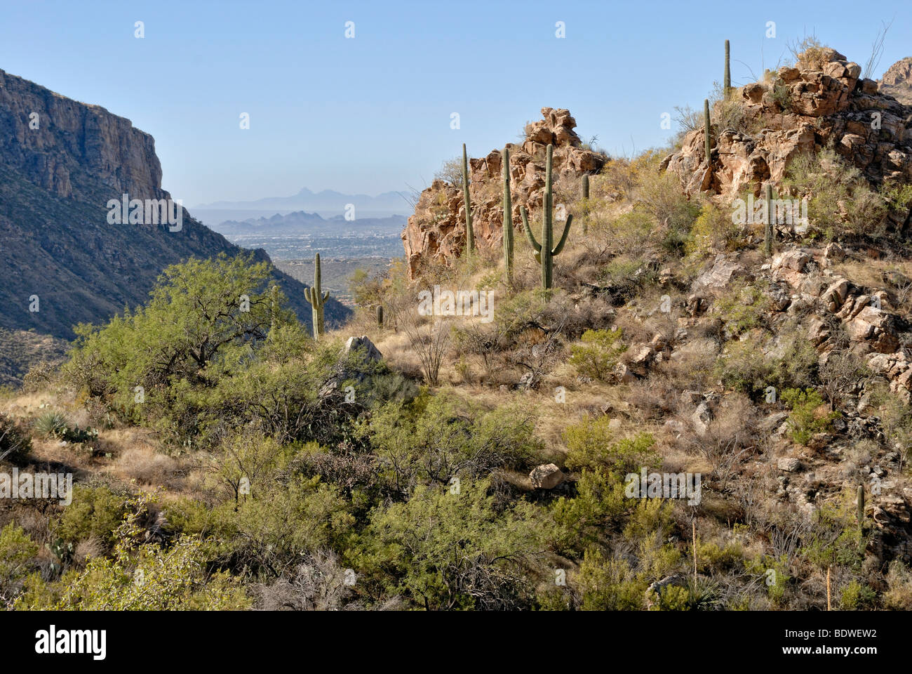 View from the high altitude hiking path in Sabino Canyon on parts of the city of Tucson, Arizona, USA - Stock Image