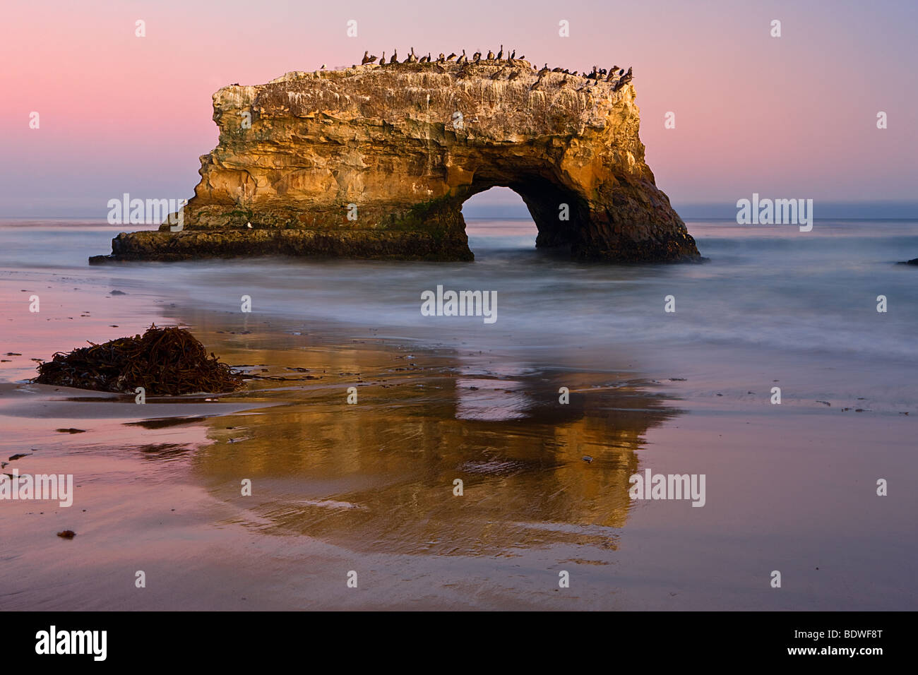A twilight sky sets off the main arch at Natural Bridges State Park, Santa Cruz, California, USA. - Stock Image