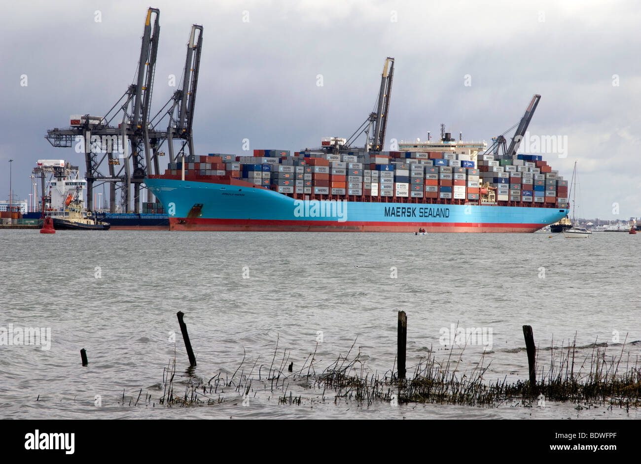 The Arnold Maersk container ship docked in port of Southampton, Hampshire, England, UK. - Stock Image