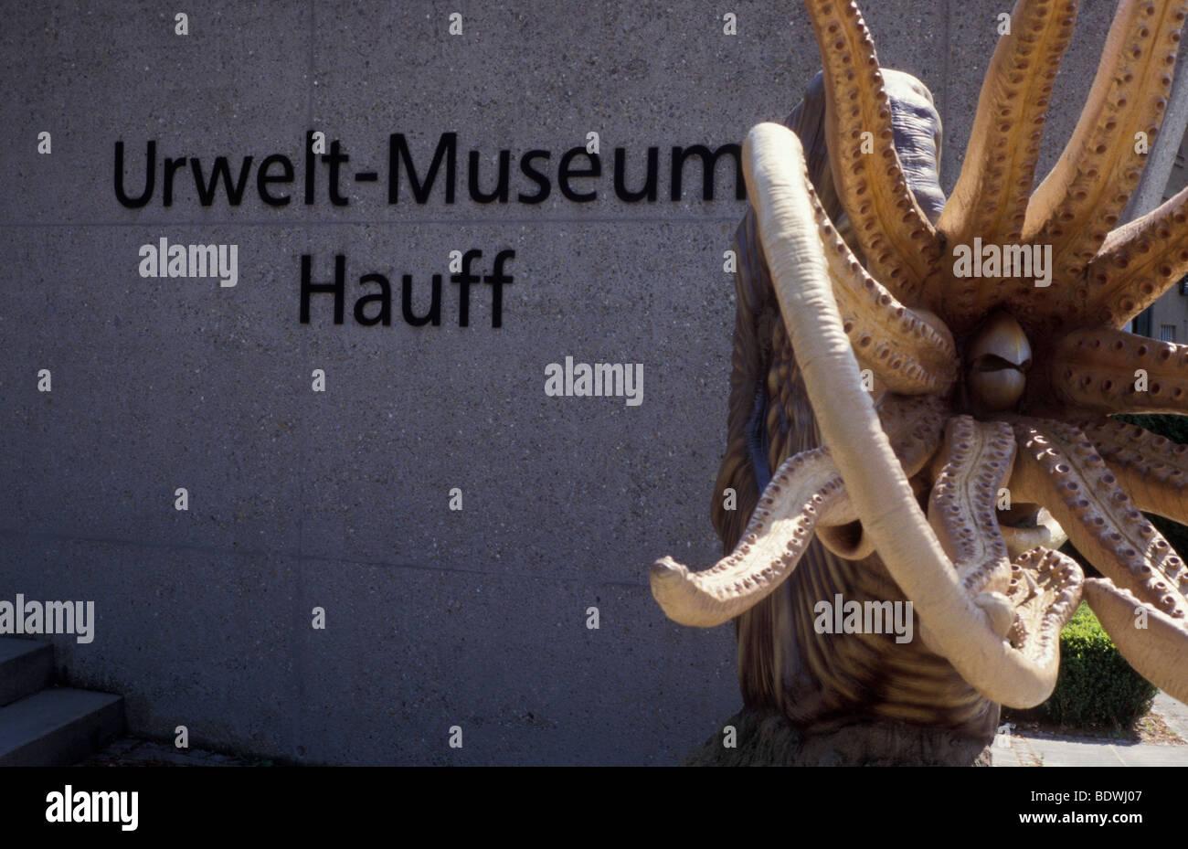 Umwelt Museum Hauff Holzmaden Germany - Stock Image